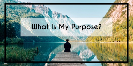 What is my purpose?, purpose