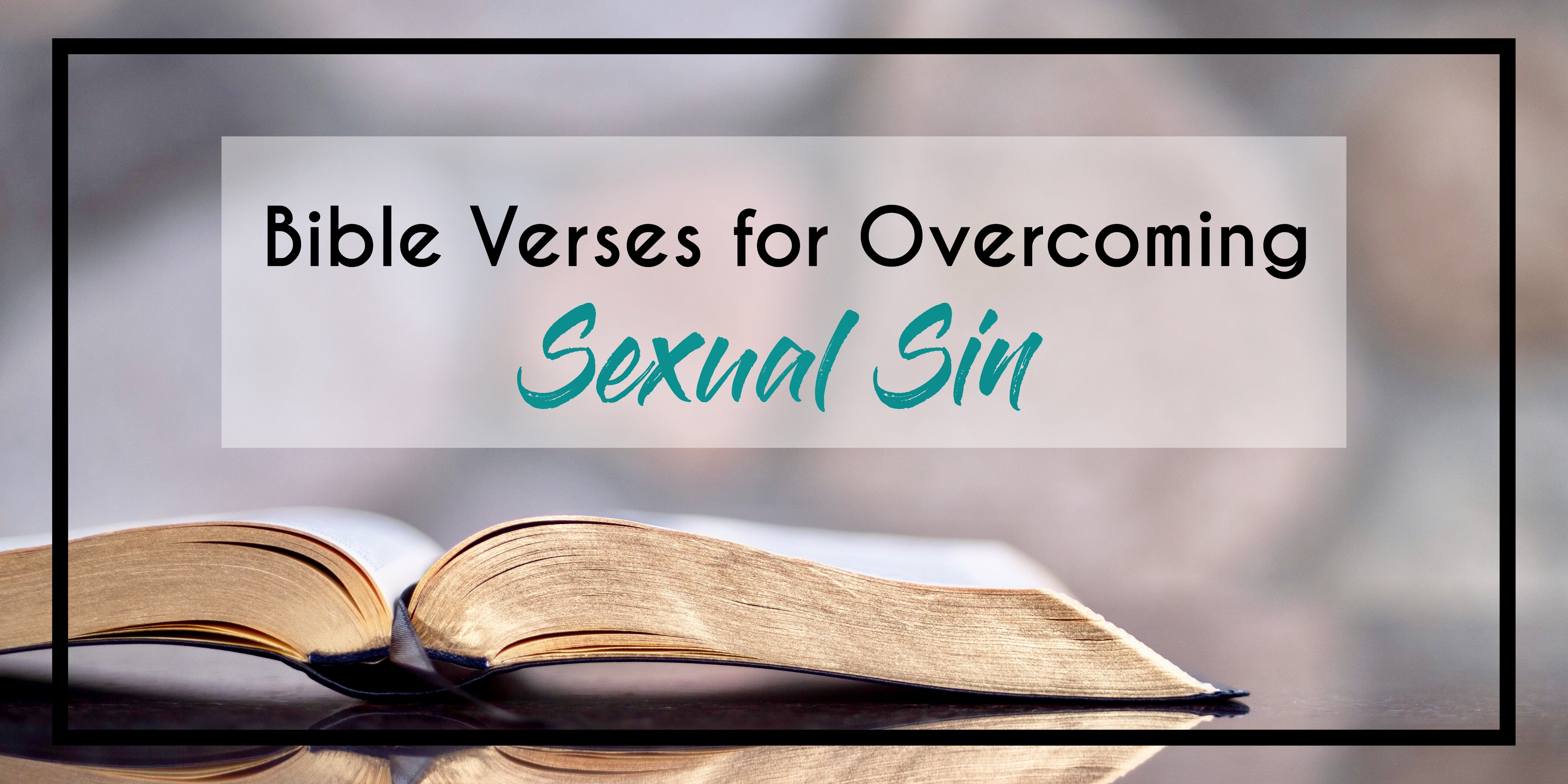 sexual immorality bible study